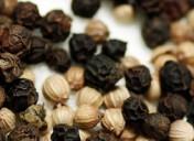 Especias Crespí i el petit comerç